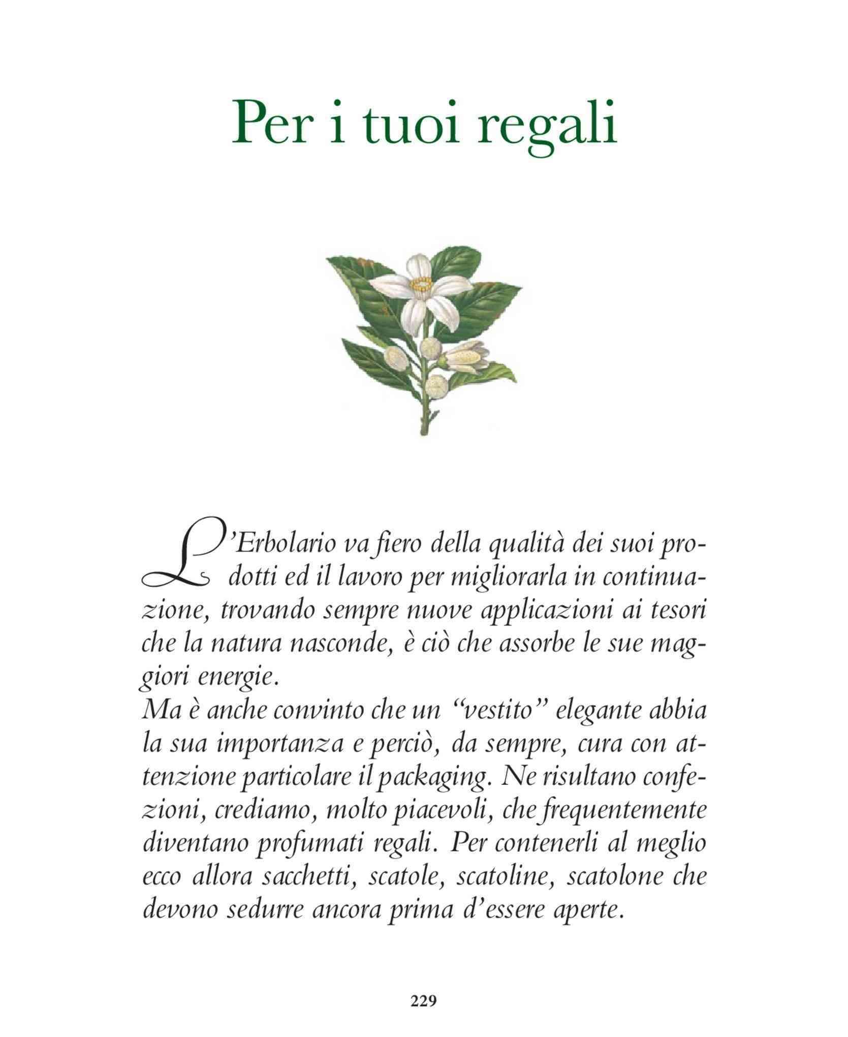 Vestiti Eleganti Negozi Torino.Offerte Vestiti Eleganti A Torino Shopping Nel Negozio Promoqui