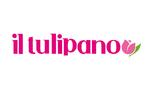 Il Tulipano